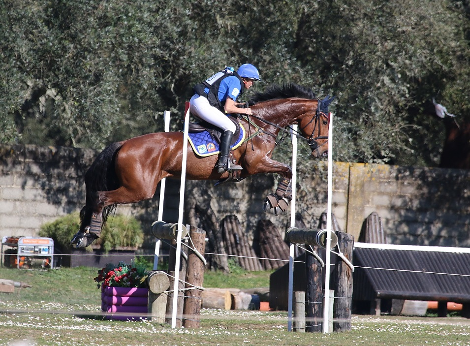 Lady Brown, Barroca d'Alva 2015, 2nd place CIC3*