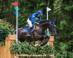 Nolimit VDB Z, 3rd place Eventing Maarsbergen 2015 (class L), © Eventingphoto.com
