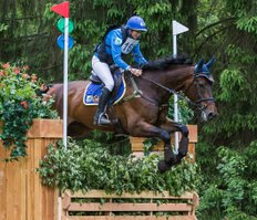 Steceno, 1st place Eventing Maarsbergen 2015 (class L), © Eventingphoto.com