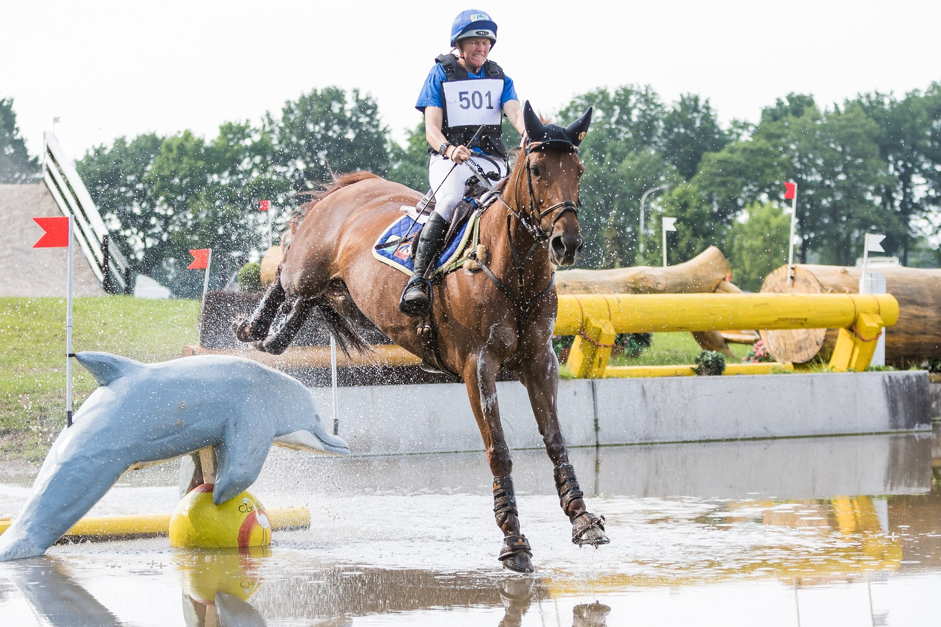 Jalapeno, 2nd place CIC2* Renswoude 2016 ©eventingphoto.com