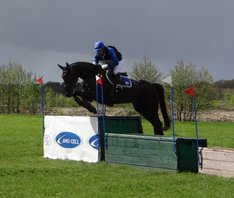 Nolimit VDB Z, cross country Eventing Minderhout 2016