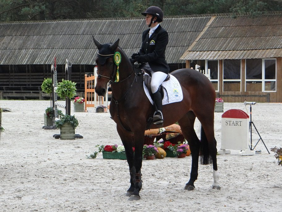 Eventing Bialy Bor 2013, Calloa vh Kloosterhof Z